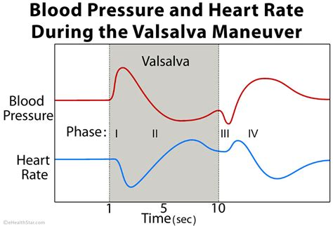 Blood pressure theory picture 6