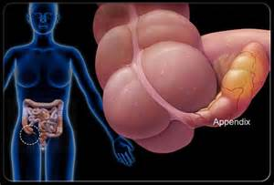right side pain bladder picture 5