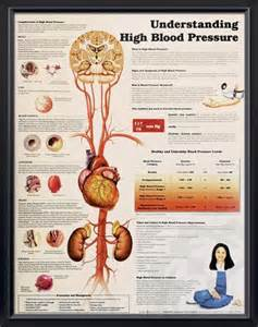 Types of high blood pressure picture 6