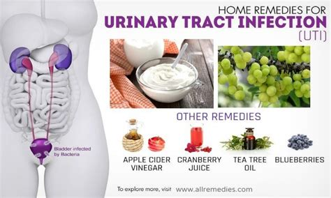 Herbal remedies for urinary tract infections picture 3