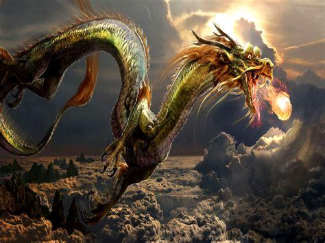 dragon picture 15