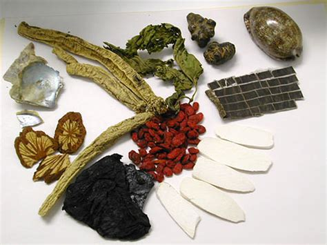 chinese herbal remedies picture 5