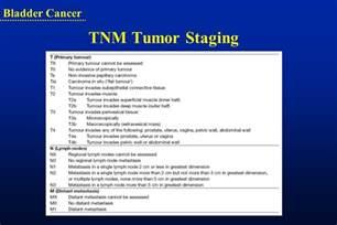 invasive bladder cancer picture 11