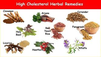 Cholesterol herb lower picture 6