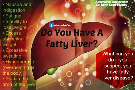 what is fatty liver picture 1