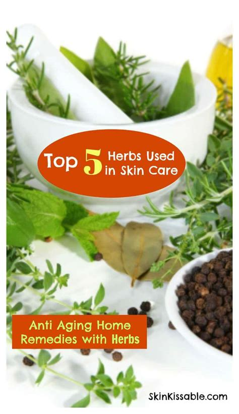 ageing herbs picture 2