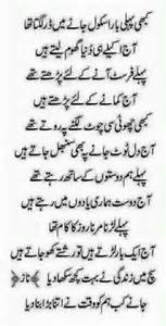 some things about homeopathic urdu picture 15