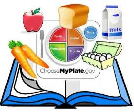 teaching kids health and nutrition picture 9