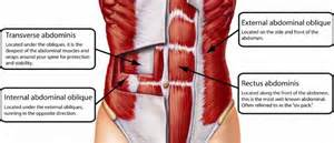 Lower abdonimal muscle twitches picture 5