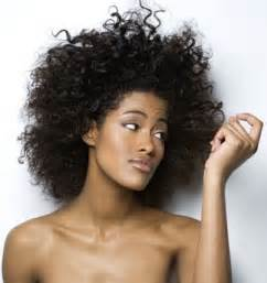 afro hair style picture 6