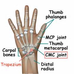 metacarpal phalangeal joint rom measurement picture 10