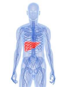 liver pain causes picture 3