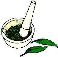 egypt plant stimulants picture 3