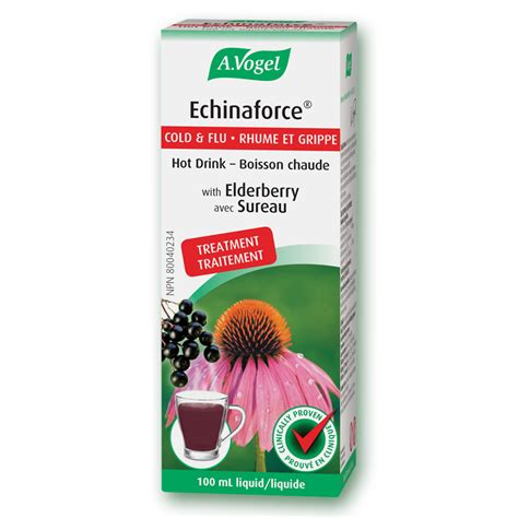 can pregnant women take echinacea picture 17