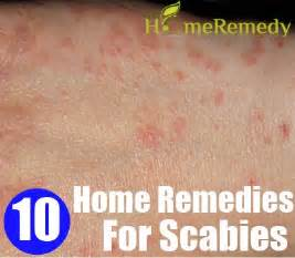natural herbal dust mite remedy picture 10