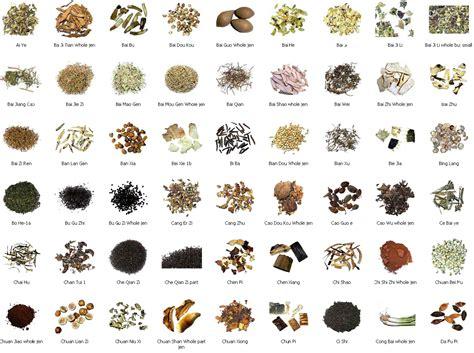 herbal sleep remedies picture 7