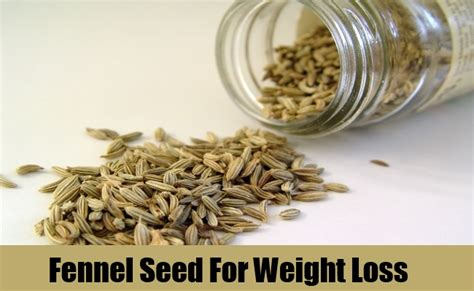 fennel seeds for weight loss picture 1