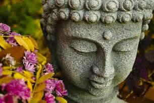 buddha hair picture 3