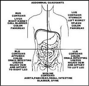 right lower quadrant pain liver picture 13