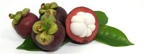 garcinia cambogia safe to use for a heart picture 8