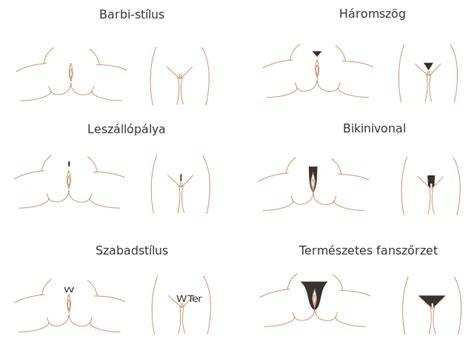 womens pubic hair design pics picture 5