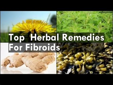 what herbal teas shrink cysts picture 10