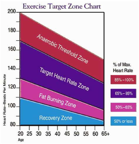 heart rate fat burning zones picture 1