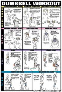 fat burning dumbbell workout picture 2