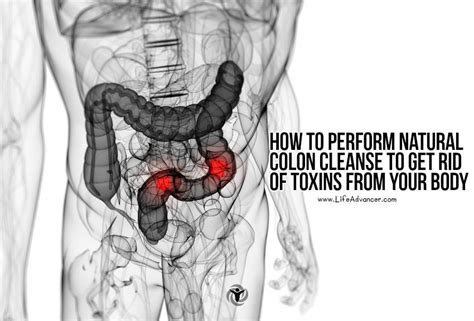 where to go to get colon cleansing in detroti picture 9