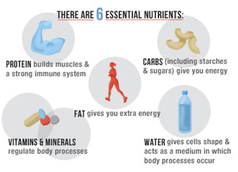 vitamins and minerals that can bring more blood picture 10