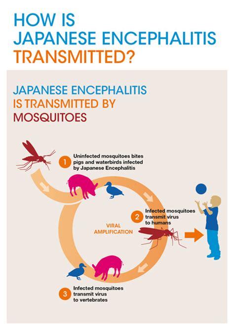inselfilitis symptoms picture 3