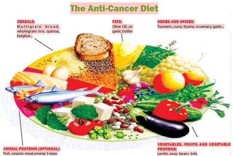 daily diet for cancer patients picture 3