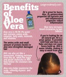 aloe vera for hair growth picture 14