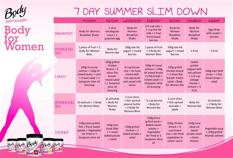weight loss on the go diet plan picture 5