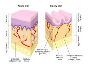 elderly skin picture 6