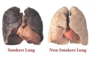 affects of cigar smoke on lung tissue picture 2