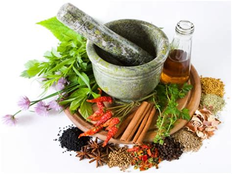 top 10 herbal supplements 2014 picture 11