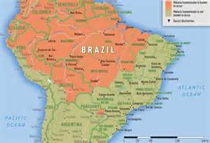 small brasil picture 14