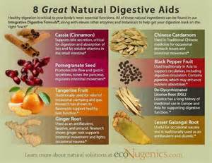 foods that aid in digestion picture 5