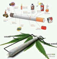 weed the more you smoke the less you picture 13