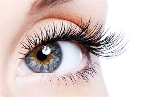 eyelash growth serum products picture 10