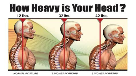 release weight loss that works picture 11