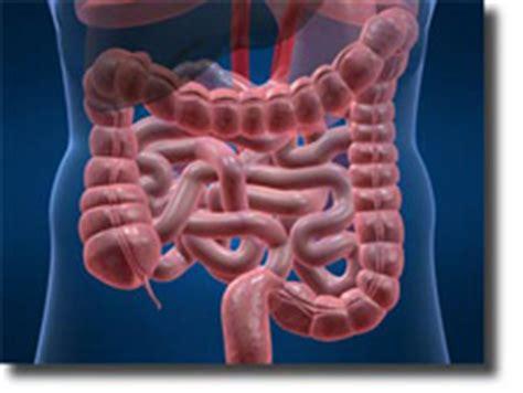 colon spasms picture 9