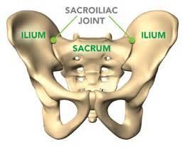sacroiliac joint vitamins picture 7