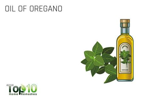 can you use oregano oil as a lip picture 7