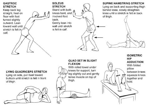 exercises for joint therapy picture 3