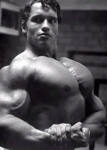 arnold schwarzenegger muscle pictures picture 13