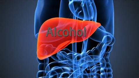 does the liver repair itself picture 1