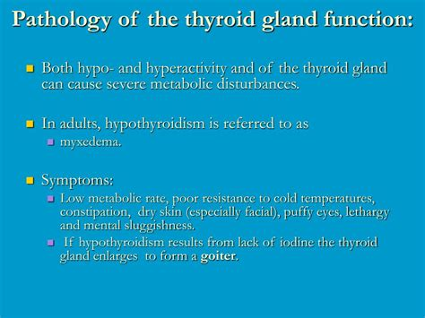 what is the purpose of the thyroid gland picture 10