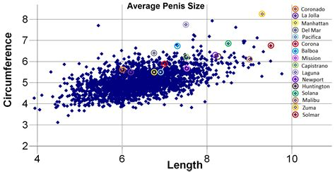 what is an average sized penis for a picture 11